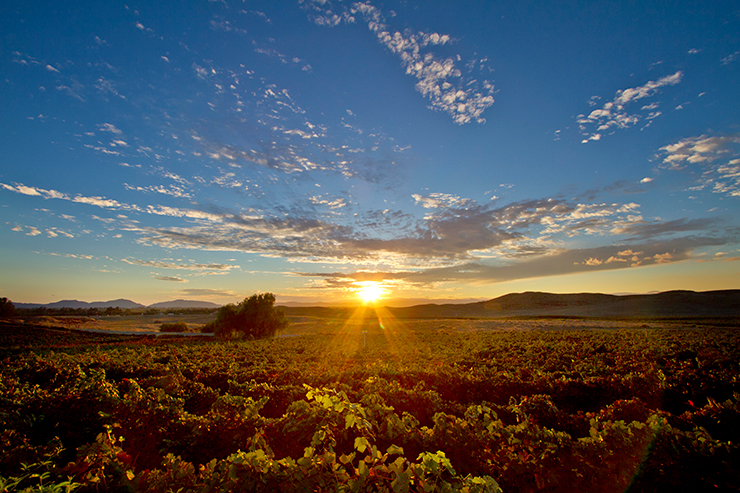 Sunset-in-Temecula's-Wine-Country